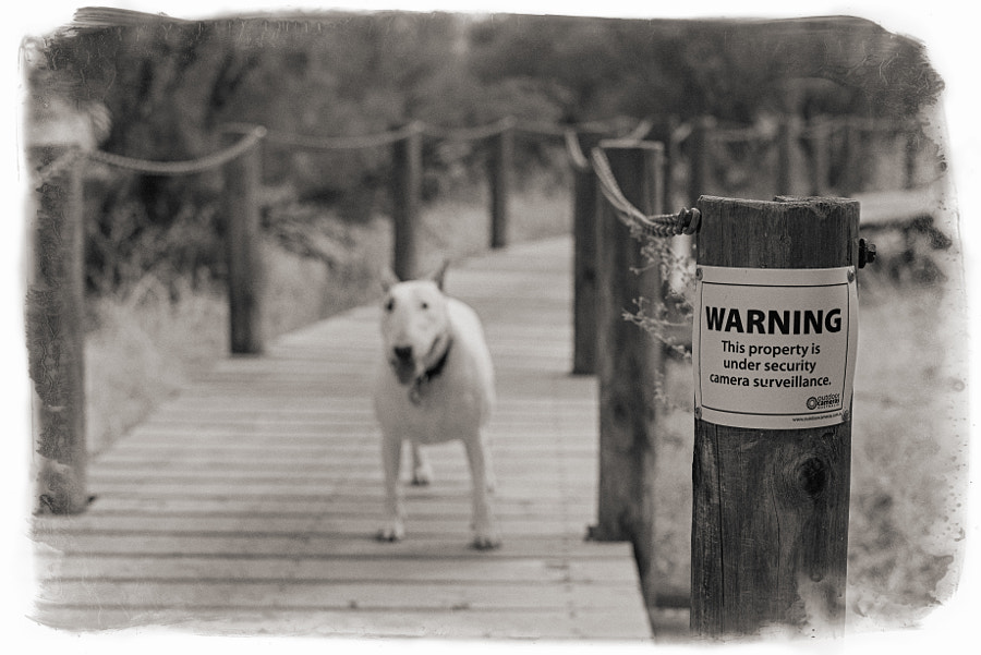 Warning by Paul Amyes on 500px.com