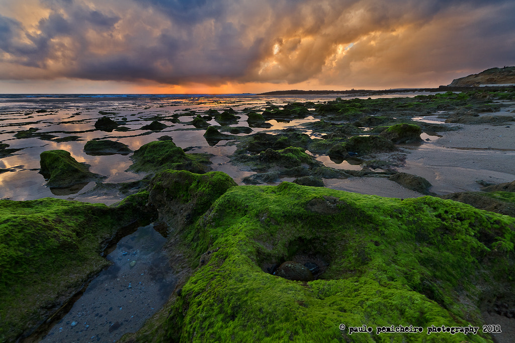Photograph The Green Moss Hole by Paulo Penicheiro on 500px