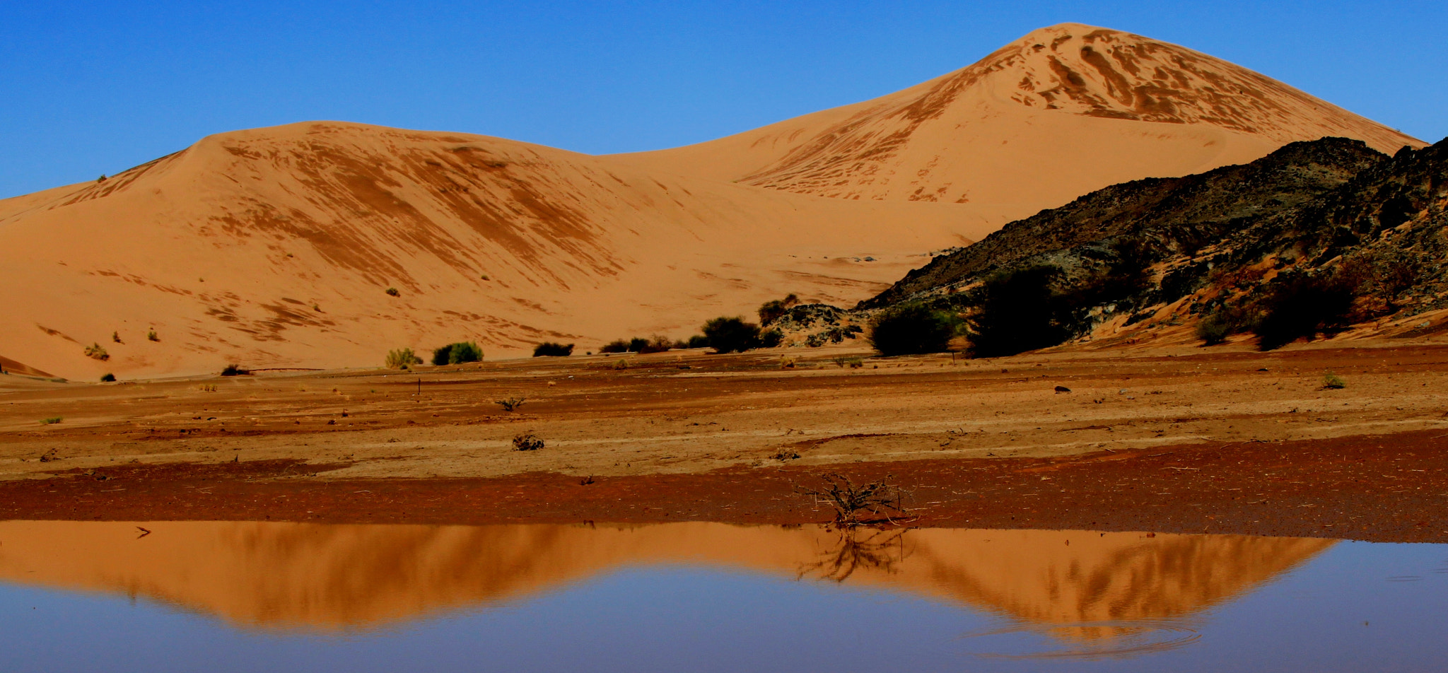 Photograph aljappyah desert * reflection  by Ahmed alharbi on 500px