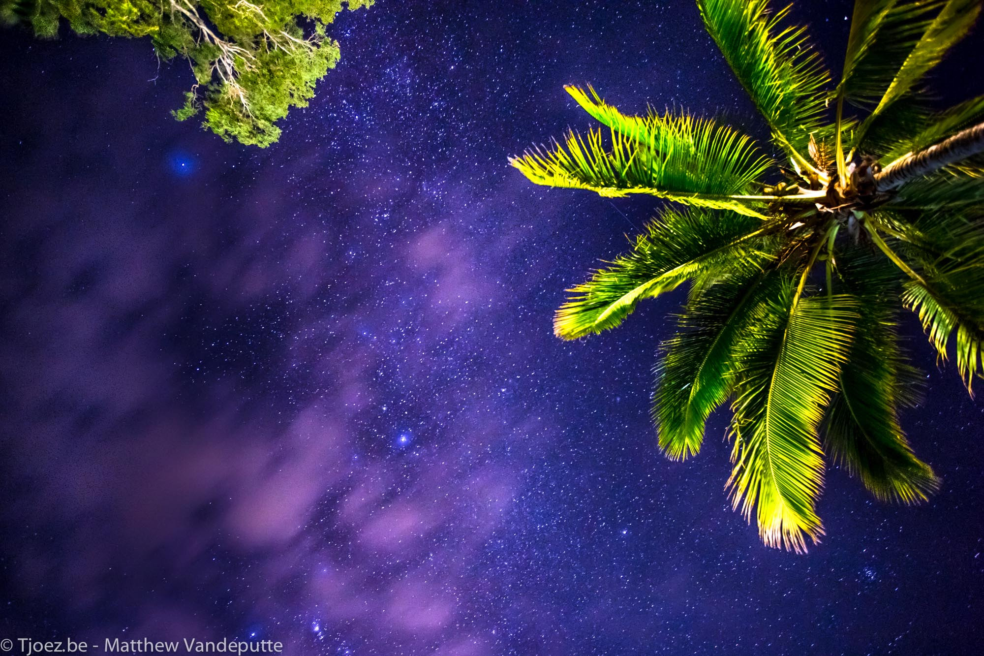 Photograph Looking up from our tent. by Matthew Vandeputte on 500px