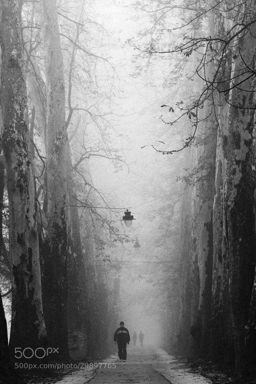 Photograph morning walk by Edib Unal on 500px