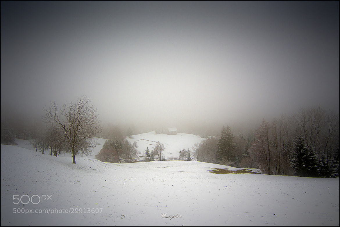 Photograph Mysticaly Winter day by Jaro Miščevič on 500px