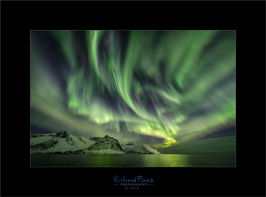 Aurora Borealis Tungeneset by Richard Paas on 500px.com