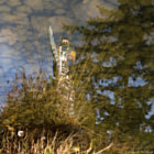 A totem pole in Vancouver's Stanley Park, reflected in a pond.