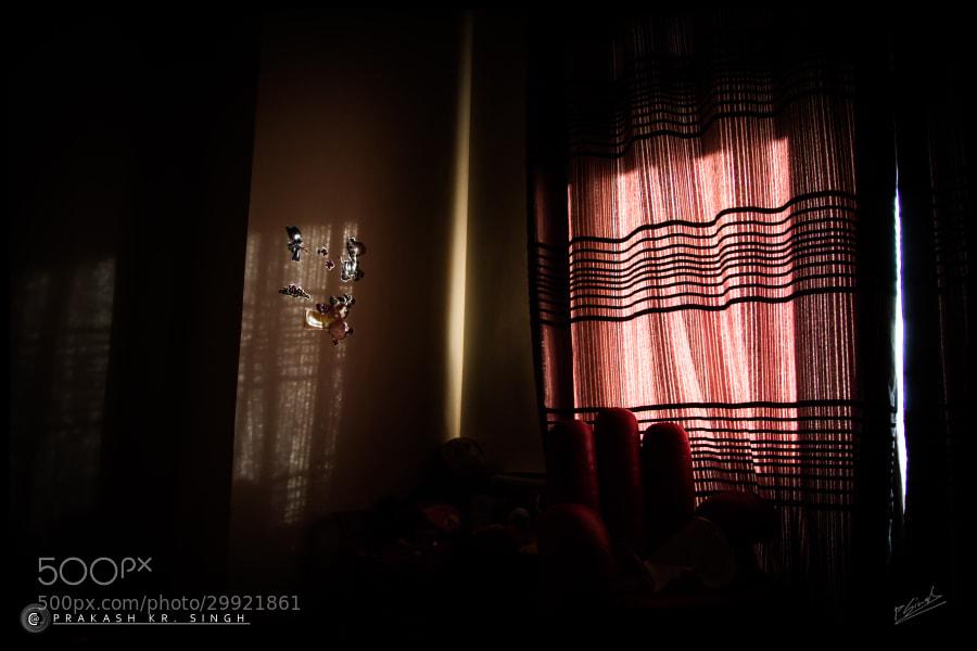 1st light