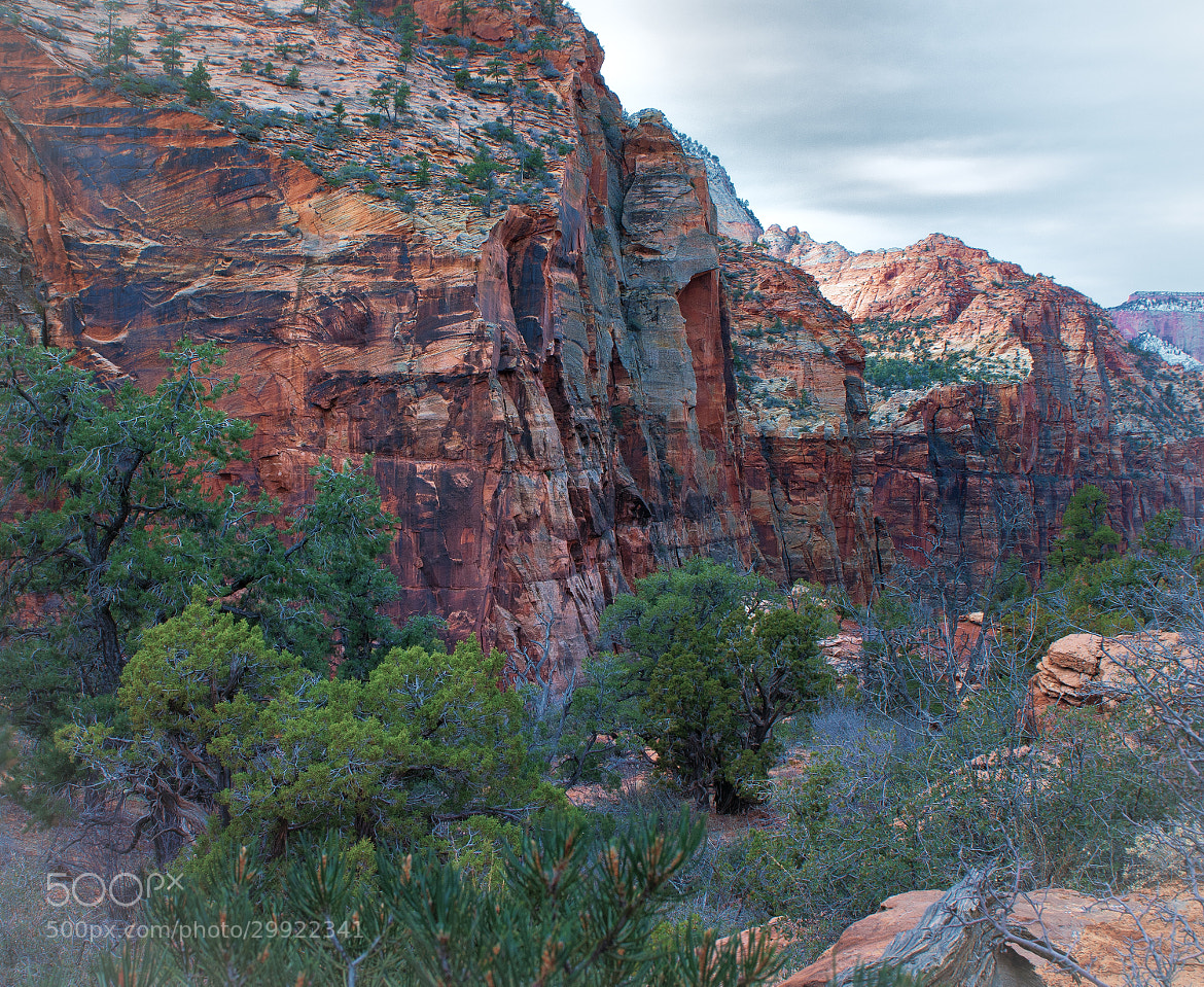 Photograph The Zion Chronicles: Valley View by Phil  Pippo on 500px