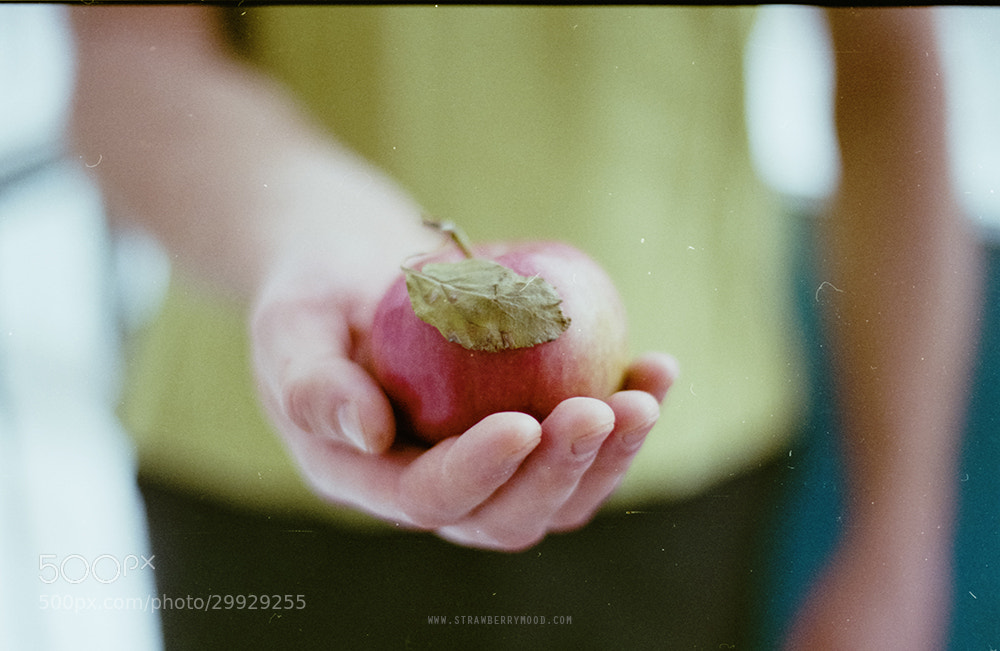 Photograph Apple by Strawberry Mood on 500px