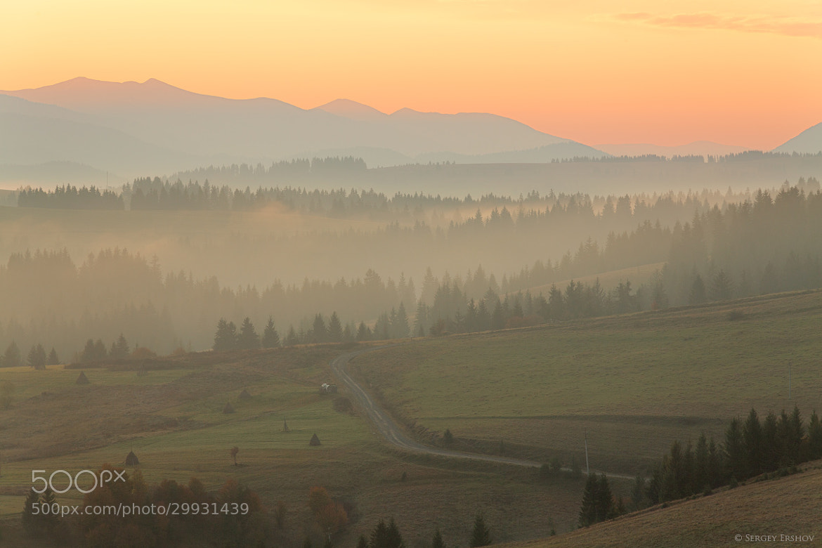 Photograph Carpathian morning by Sergey Ershov on 500px