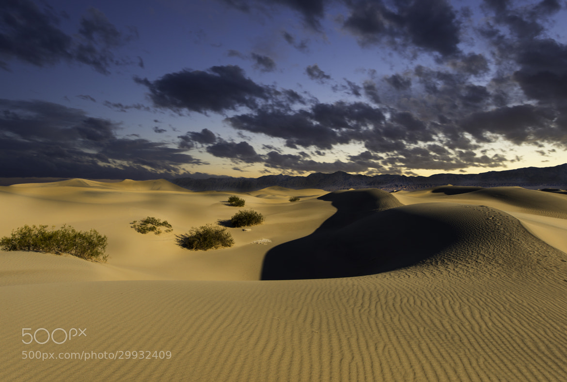 Photograph Mesquite Dunes by Michael Leggero on 500px