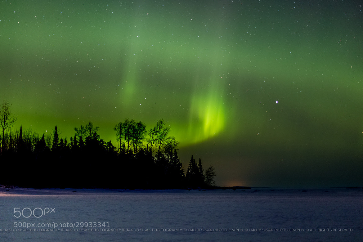 Photograph Black Bay Aurora by Jakub Šišák on 500px