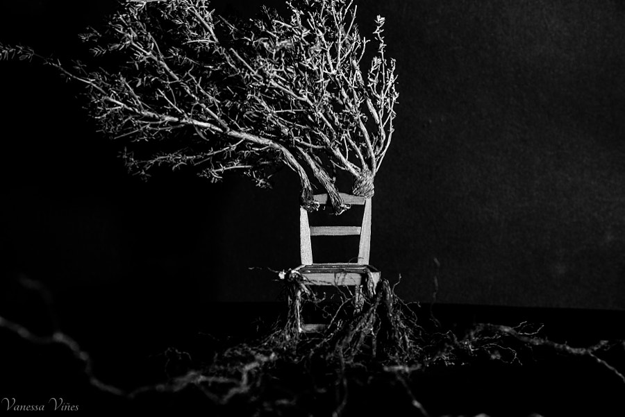 The Chair who wants to be a tree