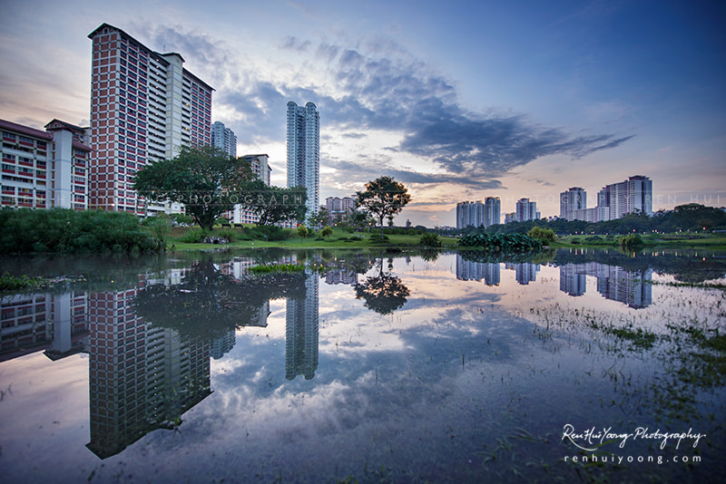 Photograph Bishan Park by Ren Hui Yoong on 500px