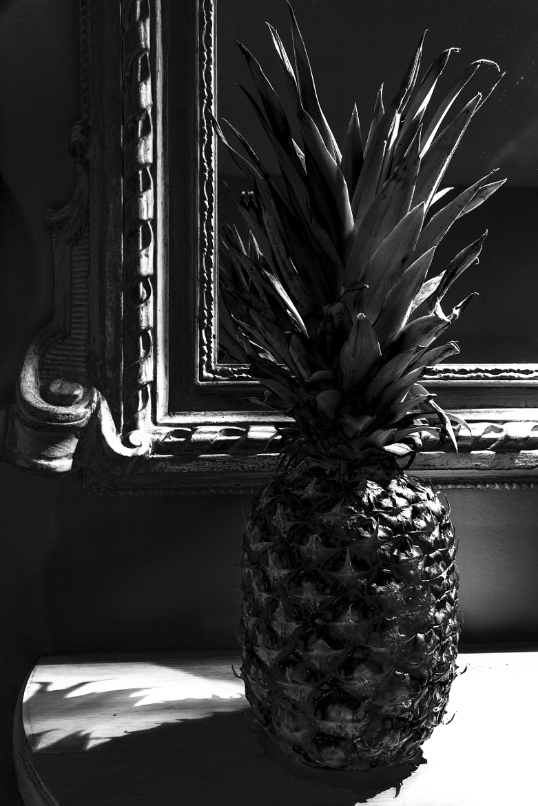 Photograph Pineapple Noir by PJ Resnick on 500px