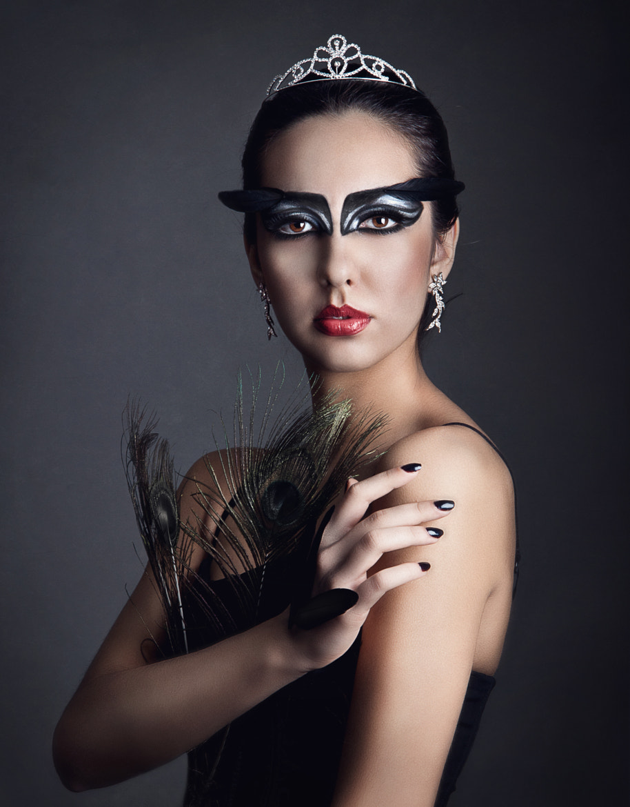 Photograph Black Swan by Anna Dudnik on 500px