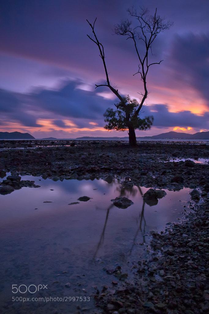 Photograph Alone by Arthit Somsakul on 500px