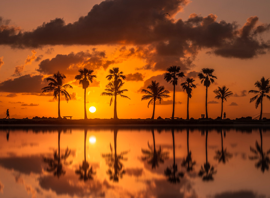 Miami Sunrise  by Brian Vargas on 500px.com