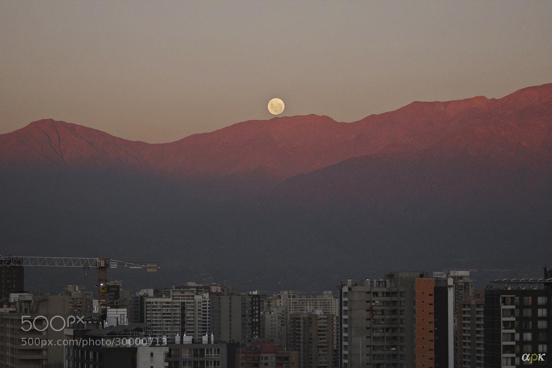 Photograph Moon over Stgo's sunset by Alpharocka  on 500px