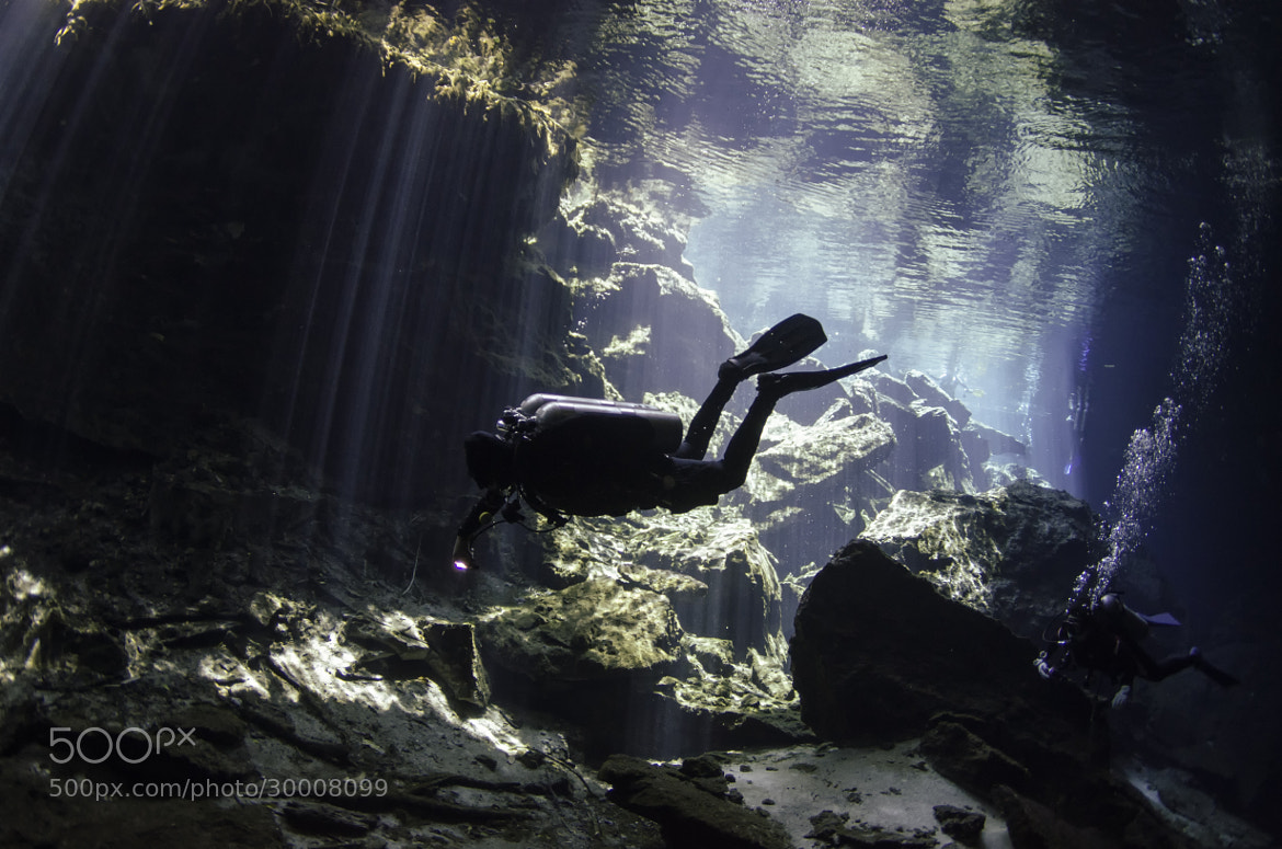 Photograph Cenote, Mexico by Carl Silverstein on 500px