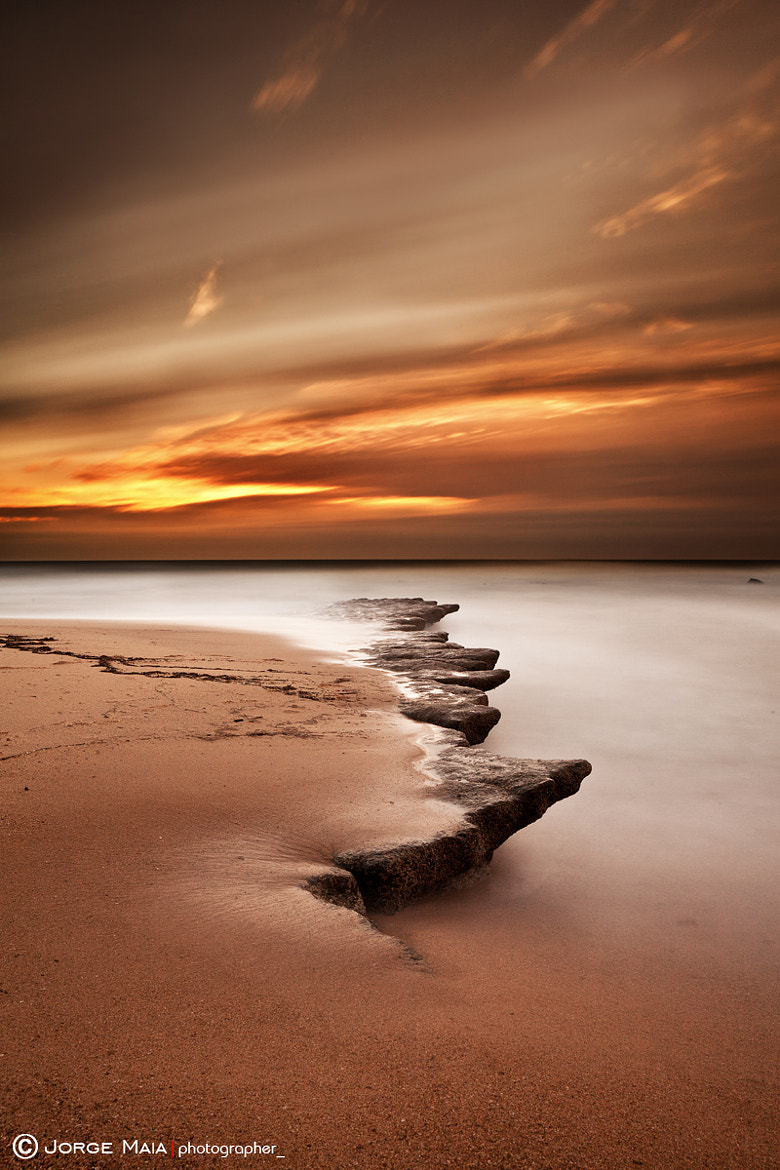 Photograph Seashore wonder by Jorge Maia on 500px