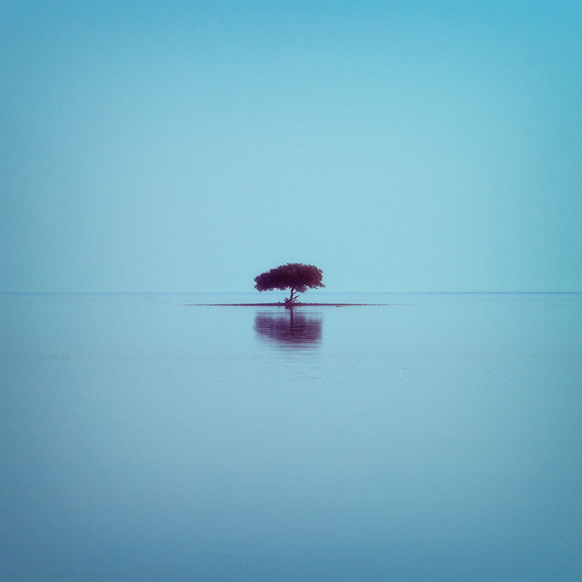 Photograph Lost in Serenity ... by Ahmed Abdulazim on 500px