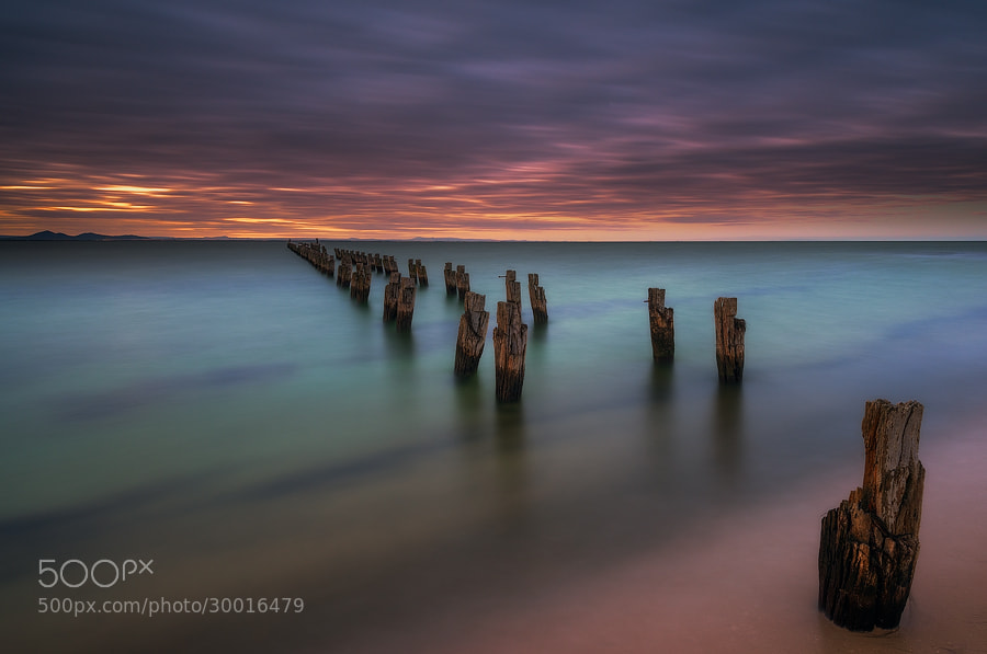 Photograph Silence by Lincoln Harrison on 500px
