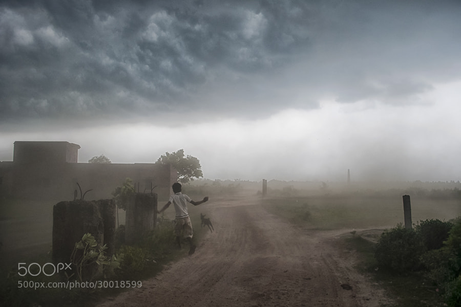 Photograph Blown with the Wind by _Ronnie on 500px