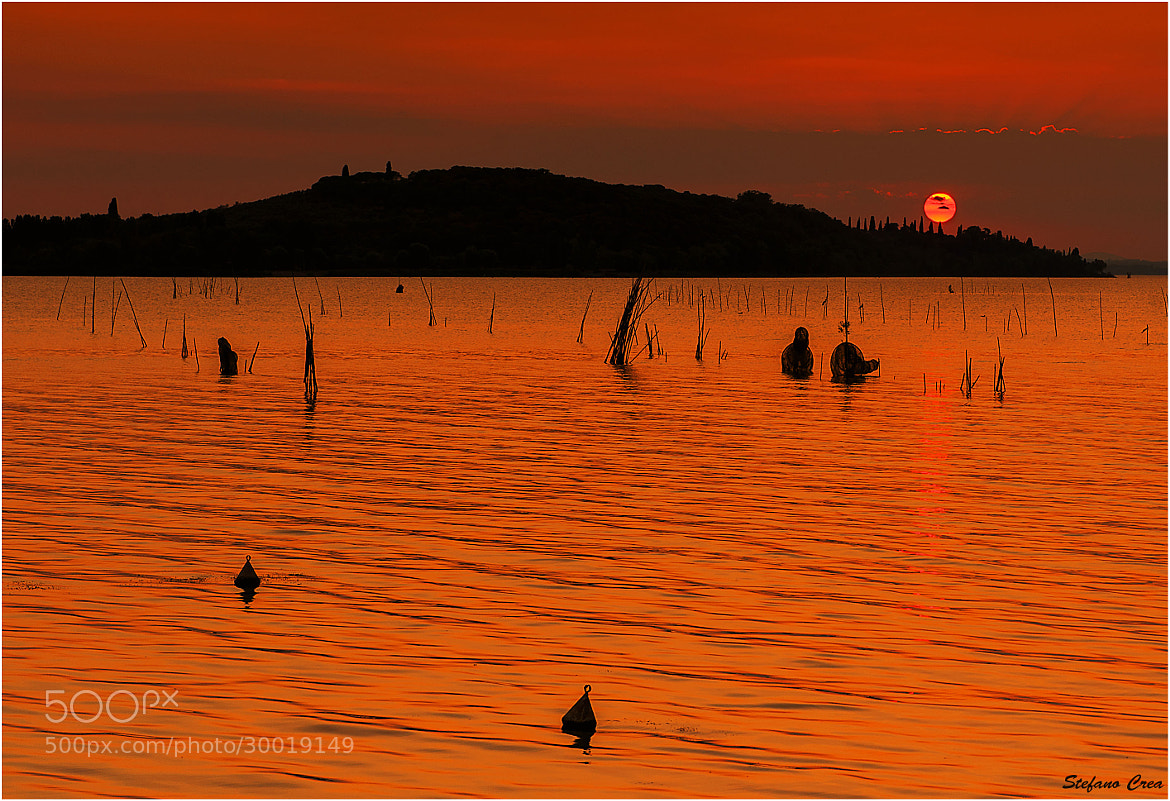 Photograph Golden lake by Stefano Crea on 500px
