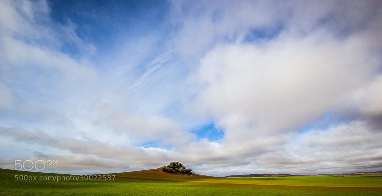 Photograph Castilla-La Mancha by Ray Zlatkin on 500px