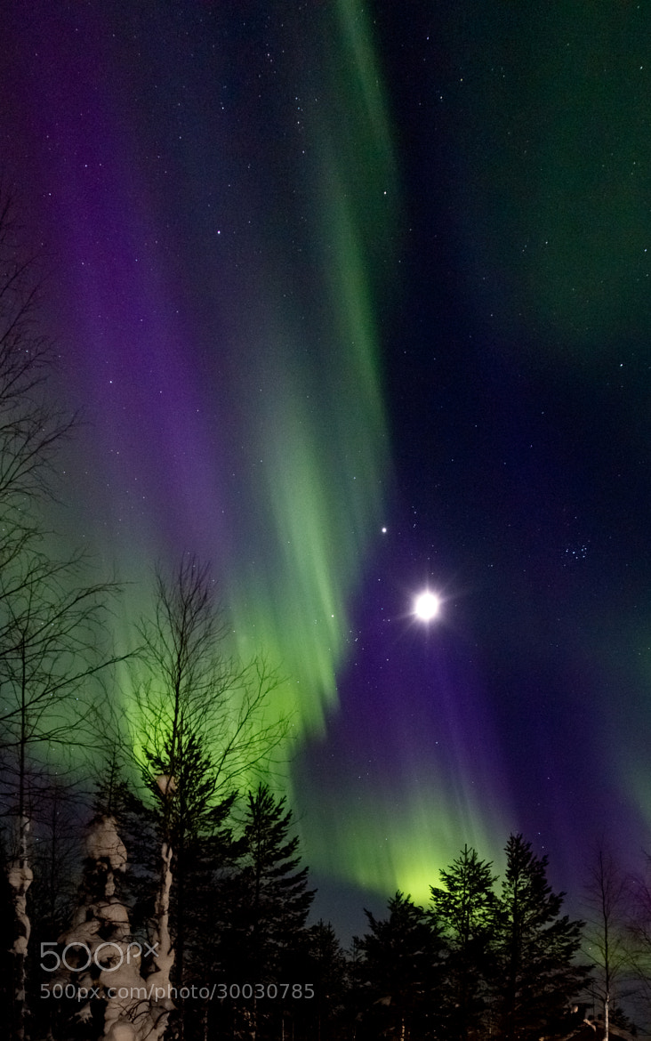 Photograph Northern Lights4 by Laurie Davies on 500px