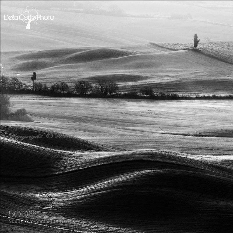 Photograph Curve . by Alfonso  Della Corte  on 500px