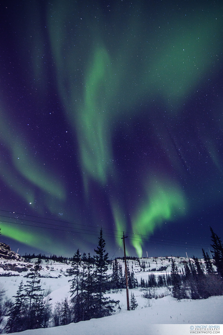Photograph Aurora Borealis, Yellowknife, Northwest Territories, Canada by Vincent Demers on 500px