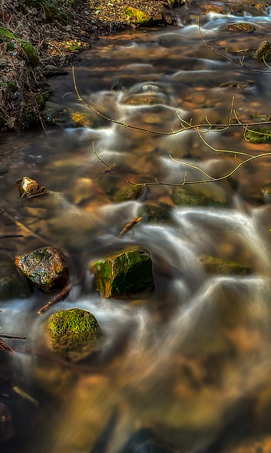 creek I by dirk derbaum on 500px.com
