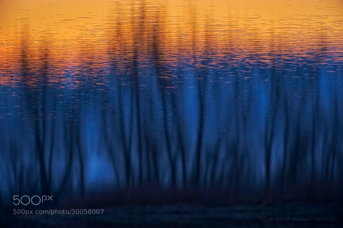 Photograph Water Color Forest by Michael Menefee on 500px