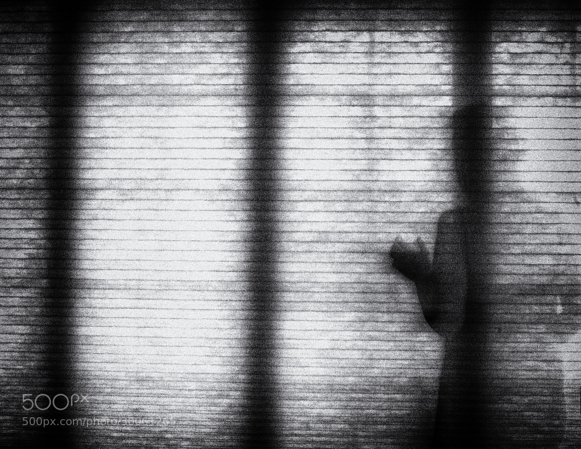 Photograph Fading away by Sonia Braga on 500px