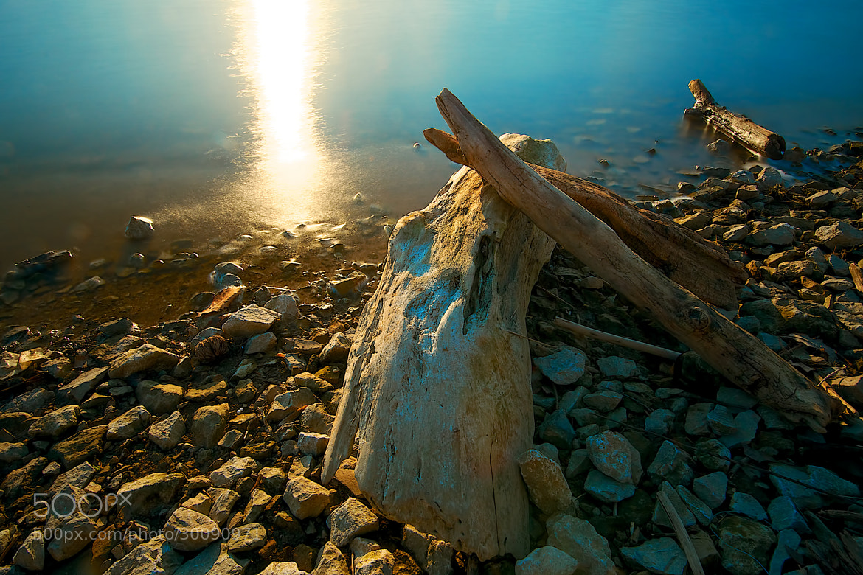 Photograph Driftwood Sunset by Berkehaus  on 500px