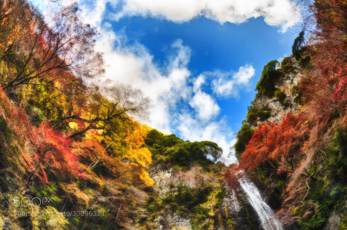 Photograph East of Eden by Yoshihiko Wada on 500px