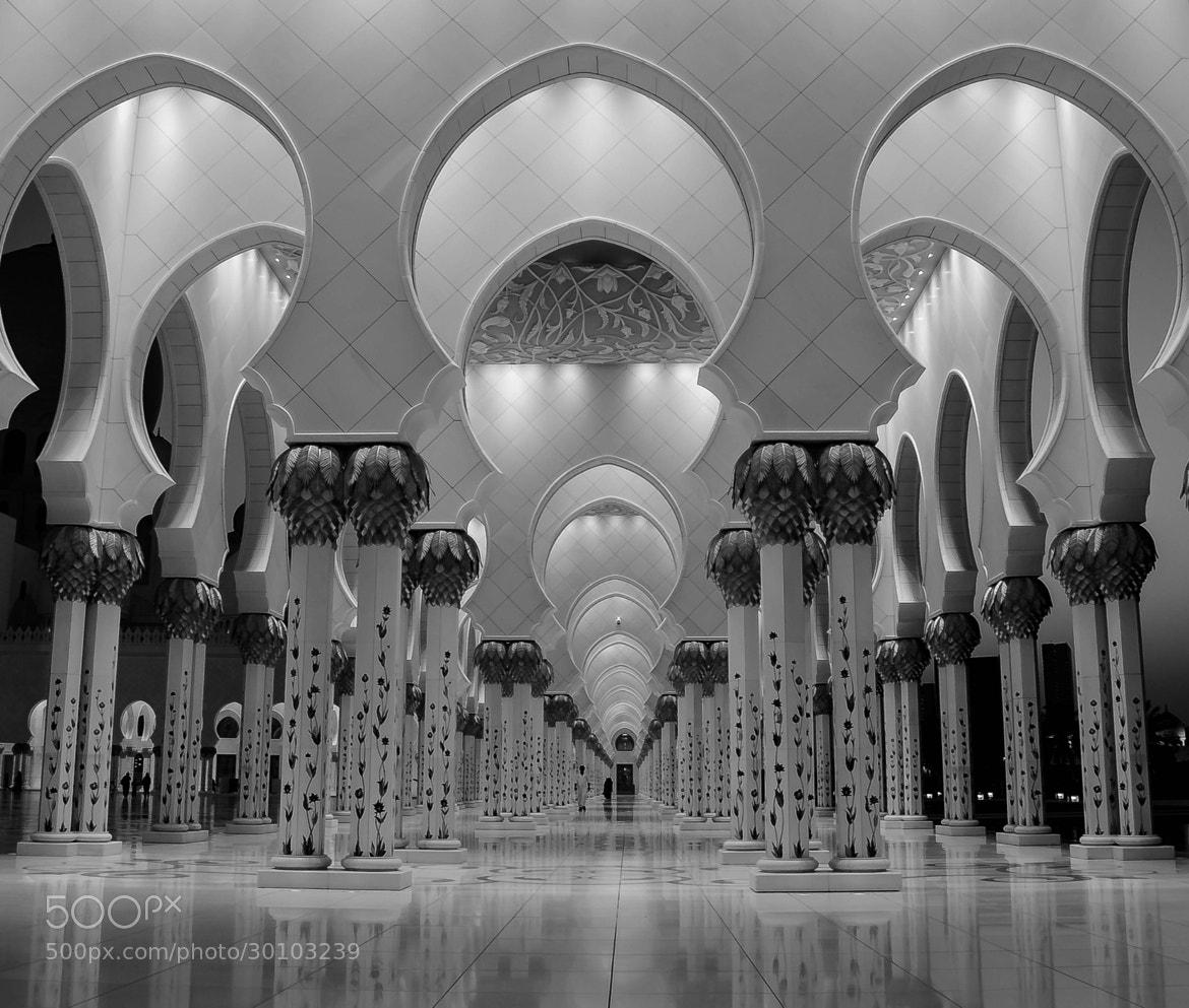 Photograph Arches at the Grand Mosque by julian john on 500px