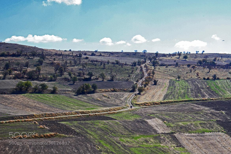 Photograph Burnt Field by Alperen Arıcan on 500px