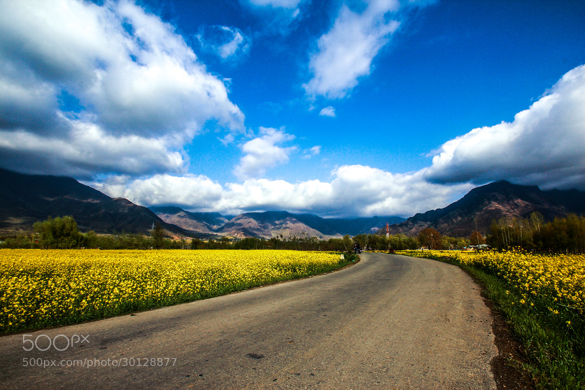 Photograph A Road Through Paradise by Deen Mohammad on 500px