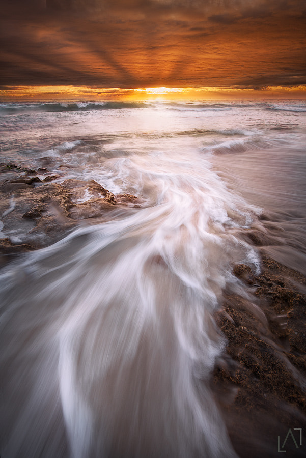Photograph Radiate by Luke Austin on 500px
