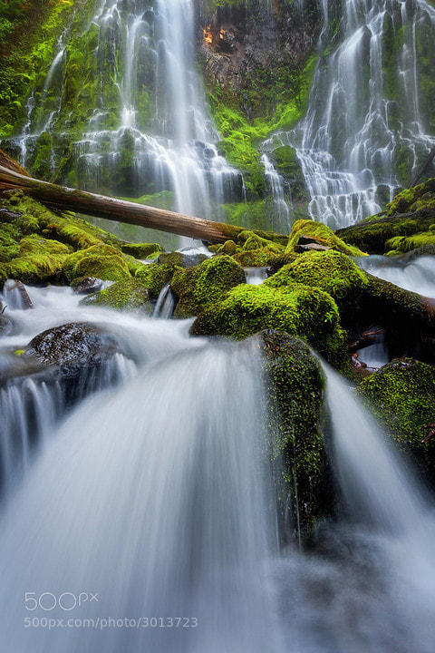 Photograph Proxy Falls Magic by Exploring Light Photography on 500px