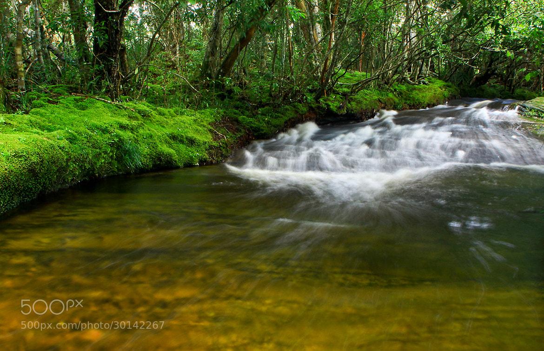 Photograph Flow by ทิวทิวา ภูตะวัน on 500px