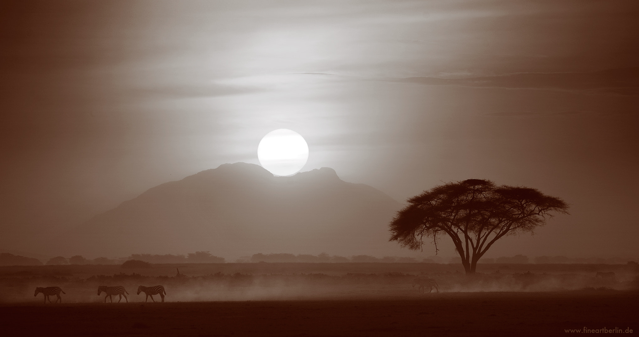 Photograph The Spirit Of Africa by Cecilia Zawadzki on 500px