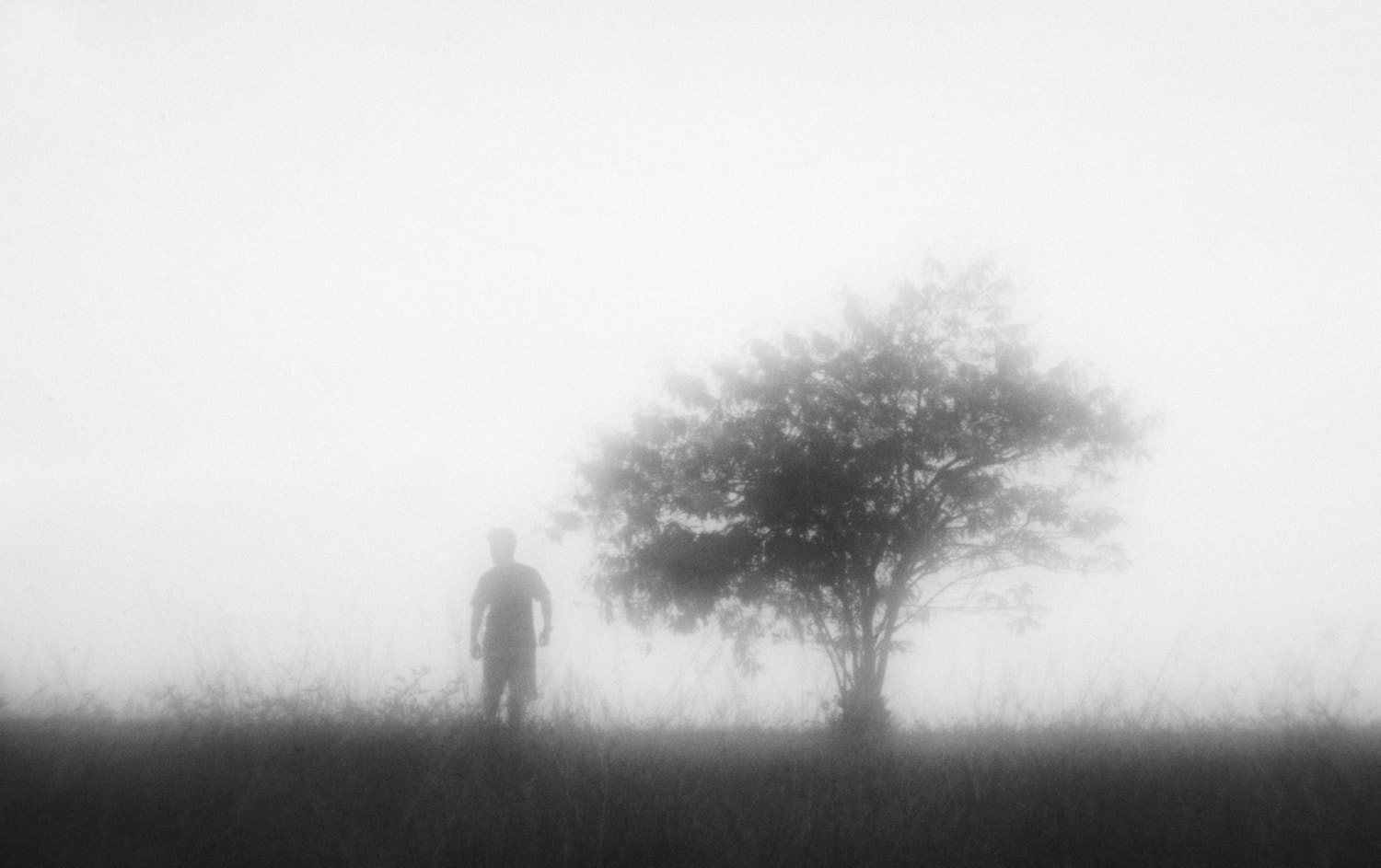Photograph A New Beginning by Hengki Lee on 500px