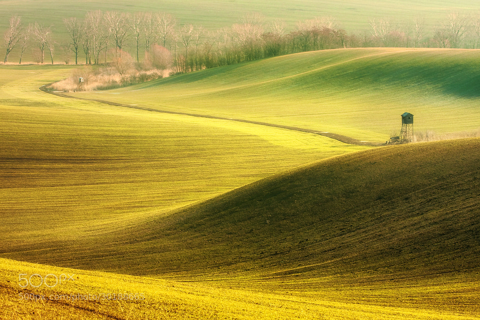 Photograph Before spring by Marcin Sobas on 500px