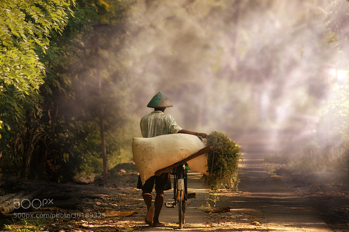 Photograph Pulang Ngarit by 3 Joko on 500px