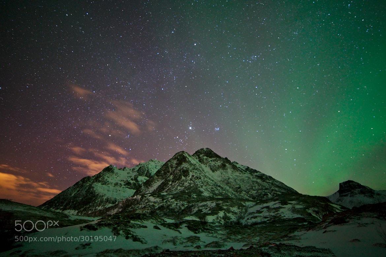 Photograph Green glow by Sergio Sartorelli on 500px