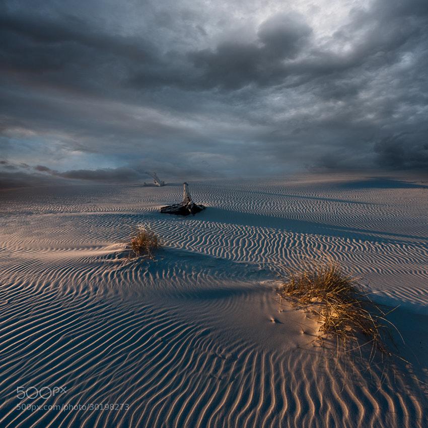 Photograph The sleepy beach ... by Joanna Maciszka on 500px