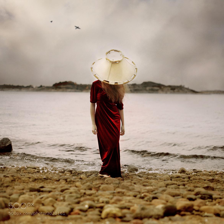 Photograph I am my own lighthouse by Beata Rydén on 500px