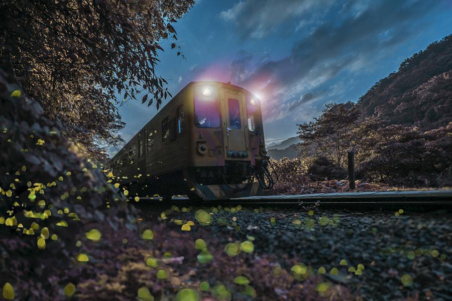 Fireflies & Night Train by Ra  wang on 500px.com